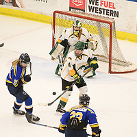 2nd year goalie Morgan Baker (30) of the Regina Cougars in action during the Women's Hockey home game on February 9 at Co-operators arena. Credit: Arthur Ward/Arthur Images