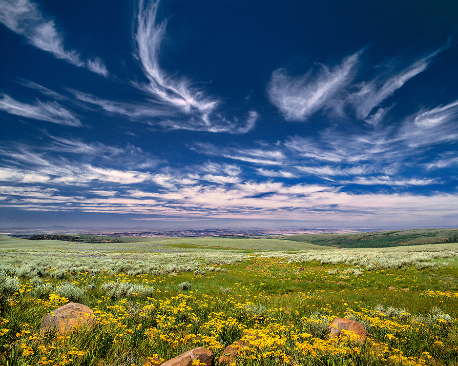 Spring burgeons beneath a sky rippled by fairy tale clouds, near Steens Mountains, Oregon. ©Ric Ergenbright