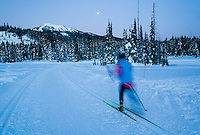 A full moon and twilight allow for enough light to continue skiing the track set trails of Paradise meadows at Mount Washington.  Comox Valley, Vancouver Island, British Columbia, Canada