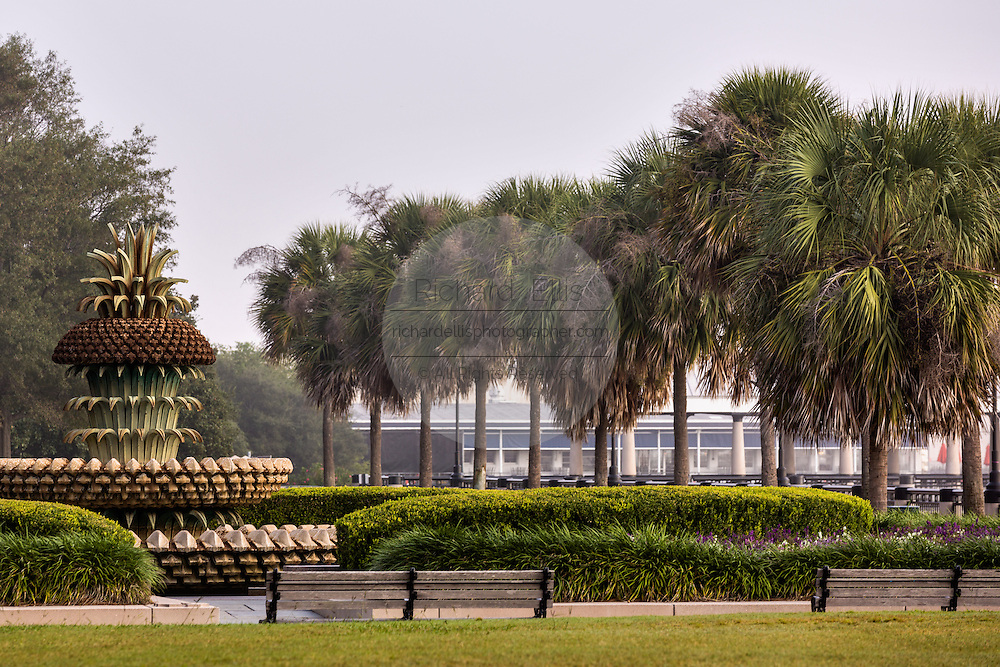 The Pineapple Fountain in Waterfront Park on a foggy morning in historic Charleston, SC.