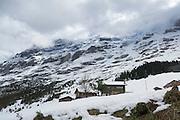 Eiger im Schnee, UNESCO Welterbestätte Schweizer Alpen Jungfrau-Aletsch, Kanton Bern, Berner Oberland, Schweiz | Eiger in snow, UNESCO World Heritage Site Swiss Alps Jungfrau-Aletsch, canton Bern, Bernese Oberland, Switzerland