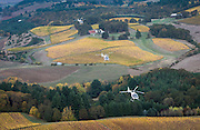 Precision Helicopters fleet of Cabri helicopters flying over wine country, Newberg, Oregon