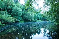 Smith River, Oregon.