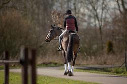 Donckers Karin, (BEL), Fletcha van't Verahof<br /> The road to Rio<br /> Stal Donckers - Minderhoud 2016<br /> © Hippo Foto - Dirk Caremans<br /> 24/02/16