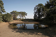 Koye Tajaba Village, Ethiopia, an area where there is a critical water shortage. After the rainy season ends this pond is the local population's only water supply. When the pond drys out, usually after 2 months, they face a 12 hour return trip to the nearest river.