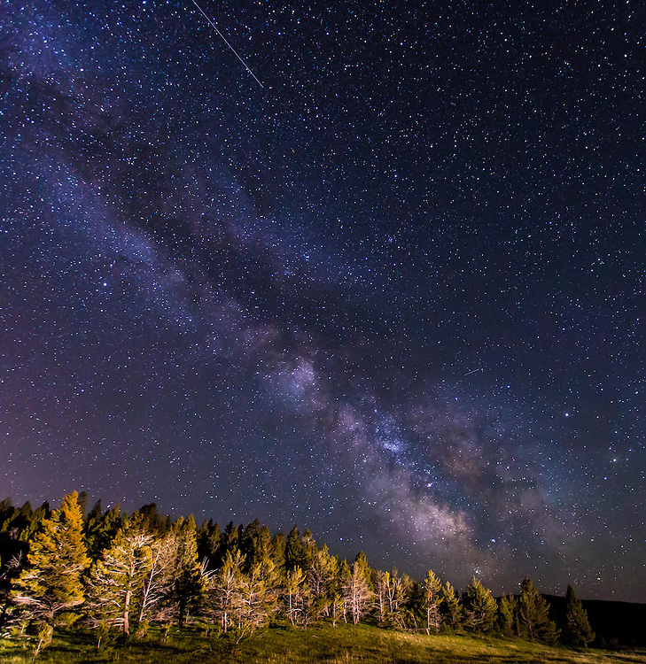The Milky Way rises over the tree line on Mullen Pass.