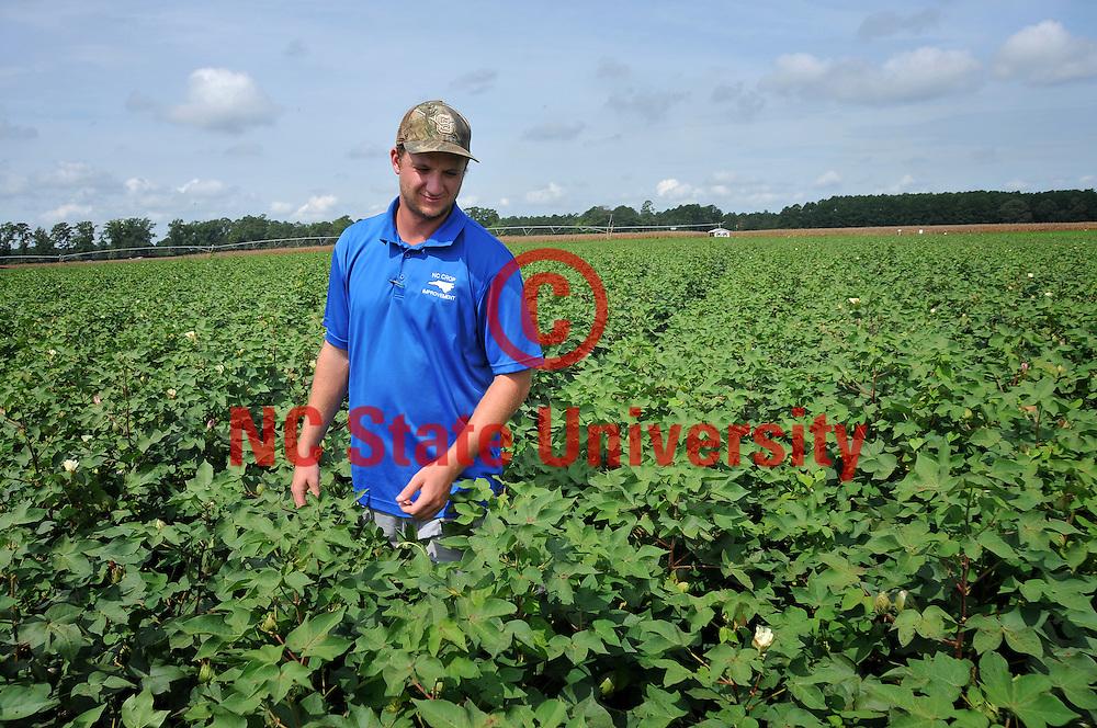 A young farmer checks on a cotton crop.