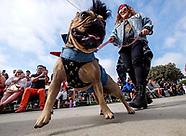 Haute Dog Howl'oween Parade 2017