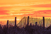 Outer Banks Sand Fence