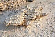 Israel, Dead Sea, salt sediment on the shore