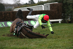 Unibet Tolworth Hurdle Day - 05 January 2019