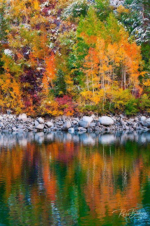 Fall color and fresh snow at Lake Sabrina, Inyo National Forest, Sierra Nevada Mountains, California USA