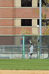 17 April 2016:  Jeremy Quade lines up to catch a ball hit just short of clearing the fence in left centerfield during an NCAA division 3 College Conference of Illinois and Wisconsin (CCIW) Pay in Baseball game during the Conference Championship series between the North Central Cardinals and the Illinois Wesleyan Titans at Jack Horenberger Stadium, Bloomington IL