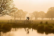 UNITED KINGDOM, London: 18 April 2019 <br /> A cyclist makes his way through Richmond Park as the sun rises on what is set to be a warm April's day. Temperatures for the Easter weekend are set to reach 25C.<br /> Rick Findler / Story Picture Agency