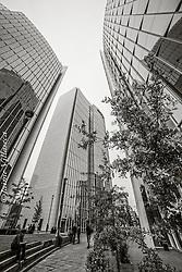 FOTÓGRAFO: Jaime Villaseca ///<br /> <br /> Edificios de oficinas en Las Condes.