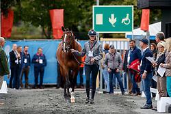 Verwimp Jorinde, BEL, Tiamo<br /> European Championship Goteborg 2017