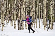 Skiing the Autmn Creek Trail in Glacier National Park in Montana model released