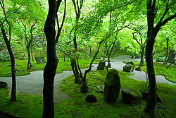 Traditional gravel and moss garden at Dazaifu Temple in Fukuoka Kyushu  Japan