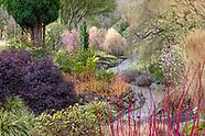The Winter Garden at Bodnant Garden