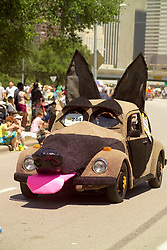 Stock photo of a dog car with tongue sticking out