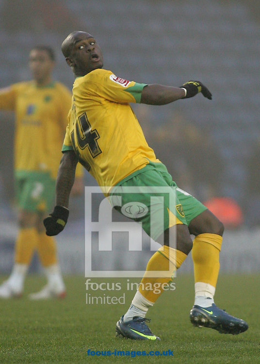 Sheffield - Sunday November 29th, 2008: Leroy Lita of Norwich City watches his attempt on goal go wide against Sheffield Wednesday during the Coca Cola Championship match at Hillsborough, Sheffield. (Pic by Michael Sedgwick/Focus Images)