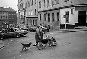 A woman walking her dogs in Zizkov.