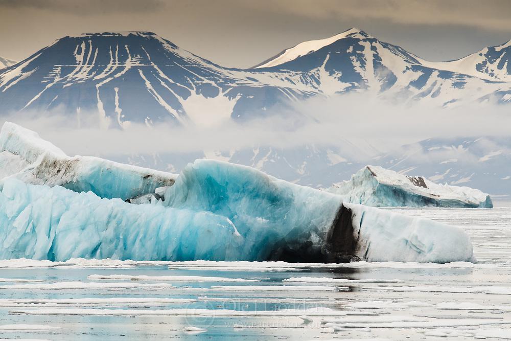 Iceberg in Storfjorden, Svalbard, Norway