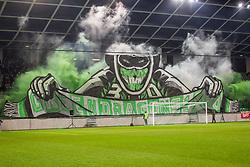 Green Dragons during football match between NK Olimpija Ljubljana and NS Mura in Round #17 of Prva liga Telekom Slovenije 2018/19, on November 23, 2018 in SRC Stozice, Ljubljana, Slovenia. Photo by Ziga Zupan / Sportida