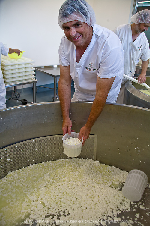 Todd Burley, plant manager, Fifth Town Artisan Cheese Co.