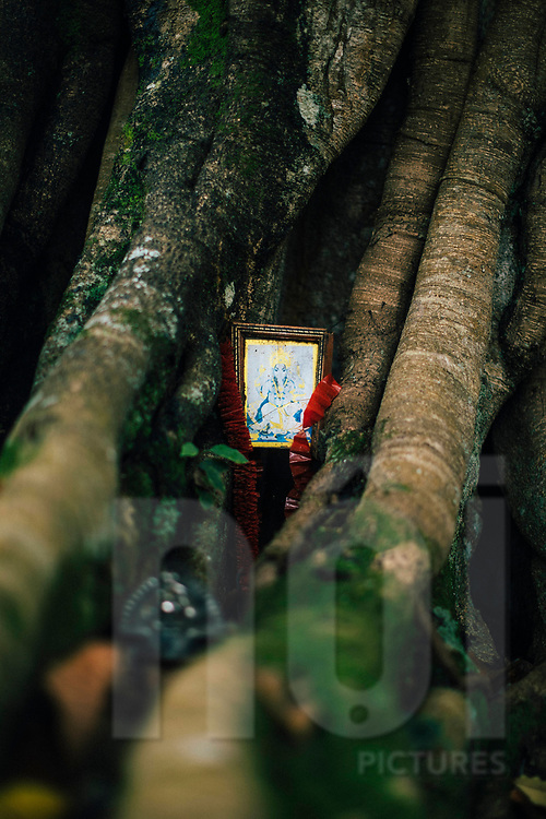 A small shrine to Lord Ganesha nestled in a tree, Ella, Sri Lanka, Asia
