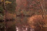Mullica River in autumn; NJ, Pine Barrens; Wharton State Forest
