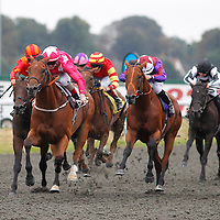 Kempton 2nd September