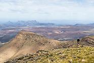 Rewildling The Karoo