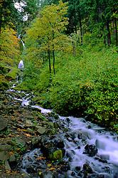 Wahkeena Stream in Columbia River Gorge National Scenic Area, Oregon, US.
