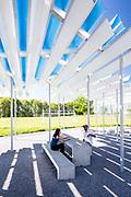 Lion's Park Shade Shelter | Greensboro, Alabama | Architect: Rural Studio