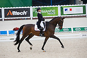 Joanne Vaughan - Elmegardens Marquis<br /> Alltech FEI World Equestrian Games™ 2014 - Normandy, France.<br /> © DigiShots