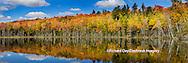 64776-010.04 Pete's Lake Schoocraft County in the Upper Peninsula MI