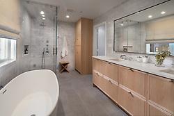 2114_10th_Street Fourbrothers contractor bathroom VA 2-174-303
