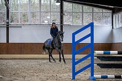 Wendungen reiten<br /> Herford - Springtraining mit Lars Meyer zu Bexten 2019<br /> 16. Januar 2019<br /> © www.sportfotos-lafrentz.de/Stefan Lafrentz