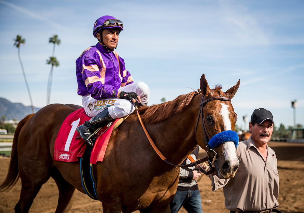 February 01 2015: Lord Nelson with Rafael Bejarano up win the San Vicente Stakes at Santa Anita Park in Arcadia CA. Alex Evers/ESW/CSM