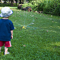 A toddler watching a lawn sprinkler, with his back to the camera.