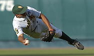 Baylor second basemen Michael Griffin flies through the air as he make the throw to first base to end the inning against the Texas Longhorns.  Texas defeated Baylor in the first round of the College World Series 5-1 at Rosenblatt Stadium in Omaha, Nebraska on June 18, 2005.