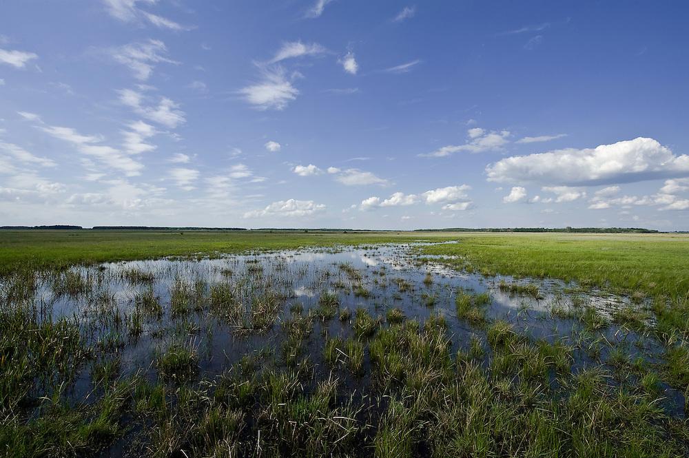 Hortobagy landscape with paddle, Hortobagy National Park, Hungary