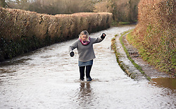 © Licensed to London News Pictures. 26/01/2014. Burrow Bridge, UK. Flooding at Wookey  on the Somerset Levels today 26th January 2014. Photo credit : Jason Bryant/LNP
