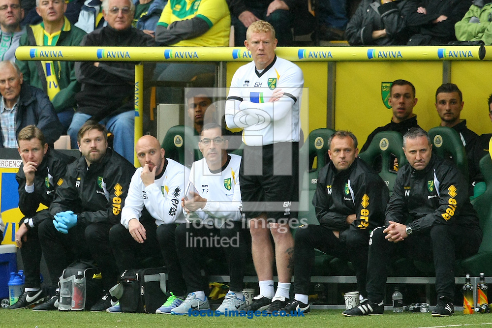 First Team Coach Gary Holt and the rest of the Norwich bench during the Sky Bet Championship match at Carrow Road, Norwich<br /> Picture by Paul Chesterton/Focus Images Ltd +44 7904 640267<br /> 04/10/2014