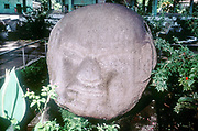 Guatemala. Pre-Columbian, Pre-Classic (1500-100 BC) Carved monolithic head from Monte Alto.