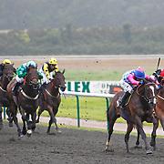Jordaura and Neil Callan winning the 5.30 race