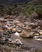 Kaweah River, River, Boulder, Boulders, Sycamore, Sycamore Tree, Buckeye, Buckeye Tree, Oak Tree, Oak, Oak, Foothills, Sequoia and Kings Canyon National Park, California