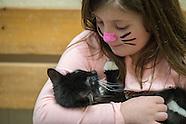 Hallmark Channel Kitten Bowls