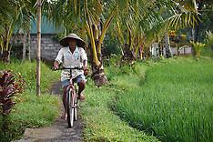 A Walk in Ubud, Bali, Indonesia